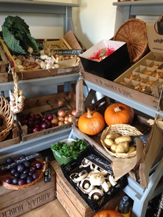 Autumn bounty at Durleigh Marsh