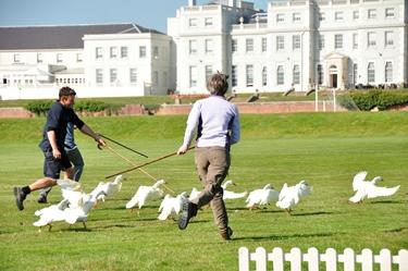 Elaine and Neil duck herding