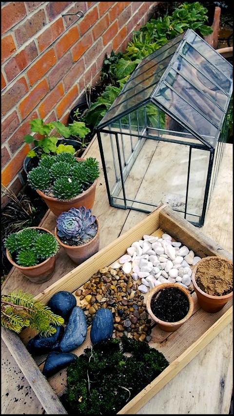 what you need to make a terrarium