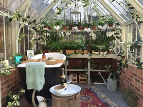 Internal shot of National Trust Scotney greenhouse designed by Clifton Nurseries
