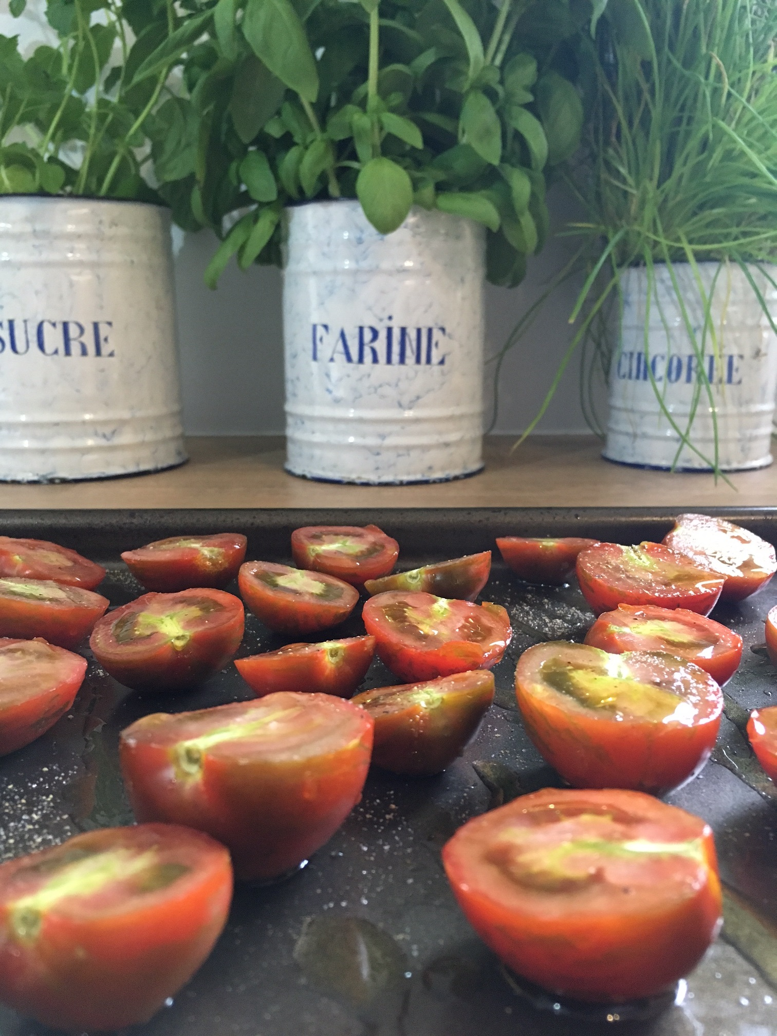 Tomatoes on tray.jpg