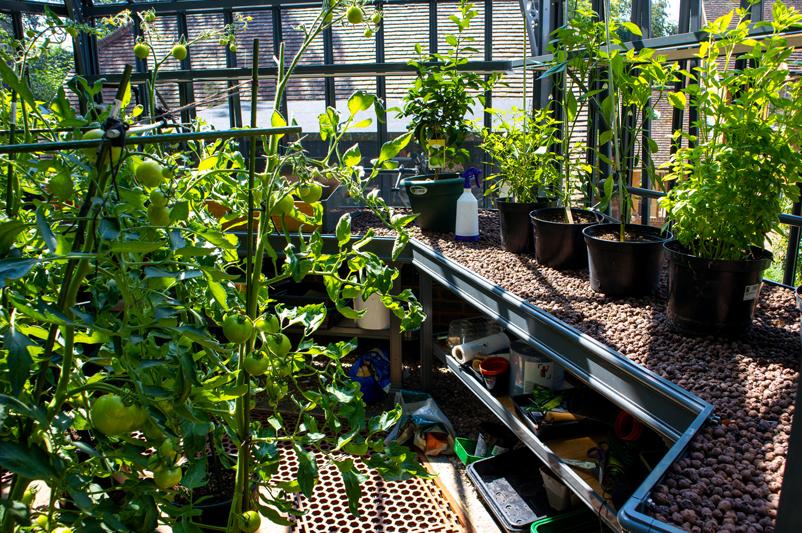hexagonal greenhouse layout inspiration
