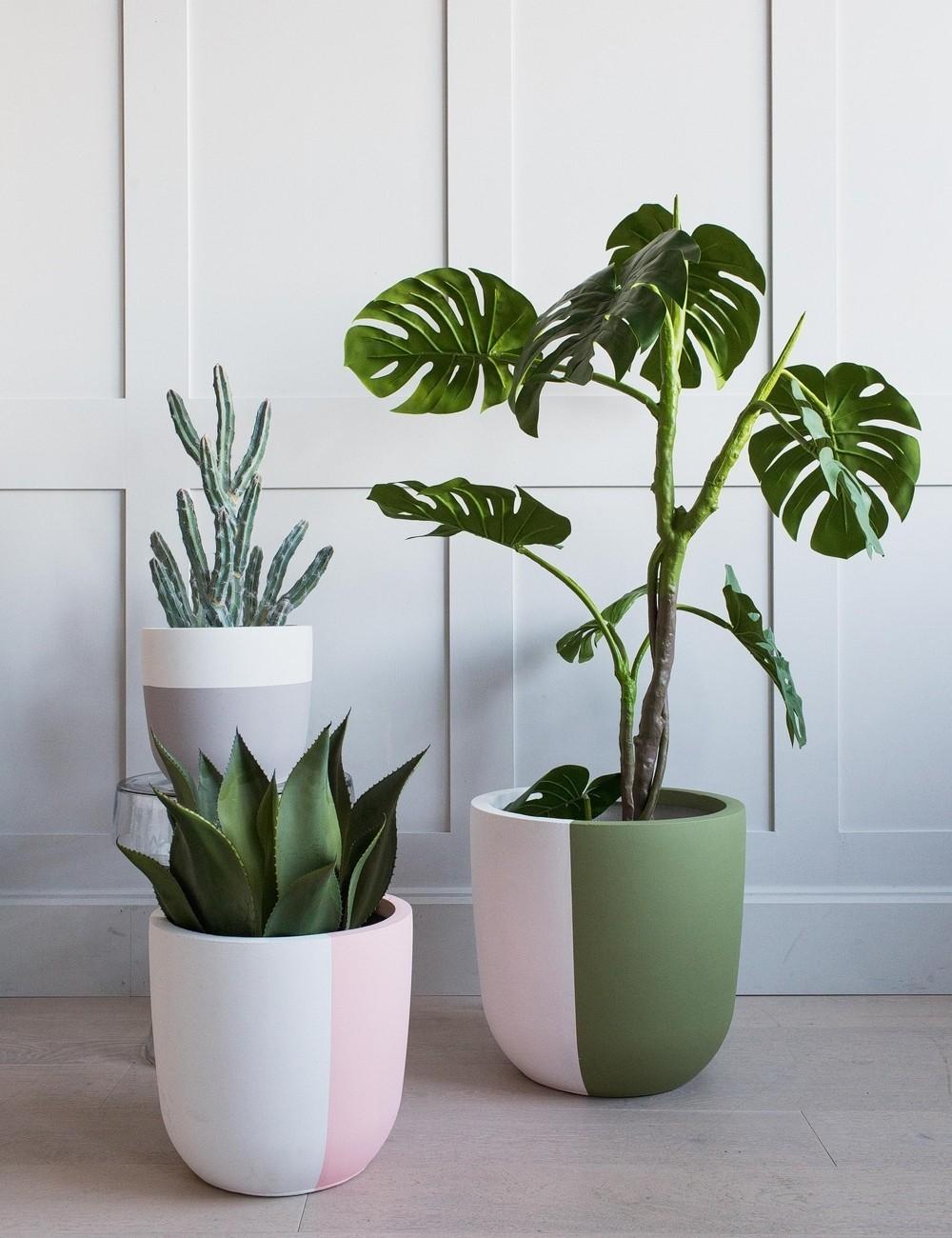 Plant Pot Inspiration