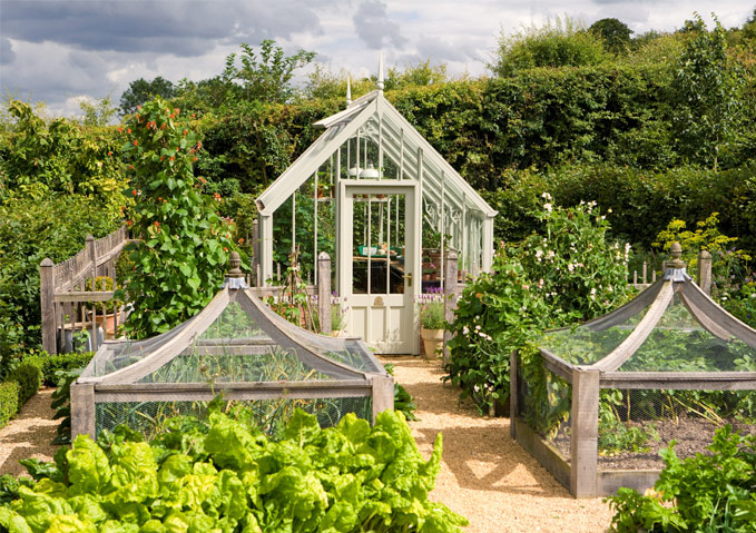 A National Trust Soctney greenhouse in Wood Sage in a very pretty kitchen garden