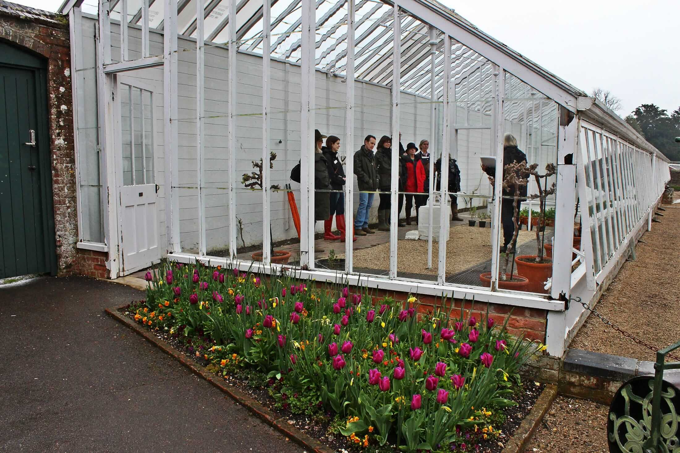In the West Dean greenhouse