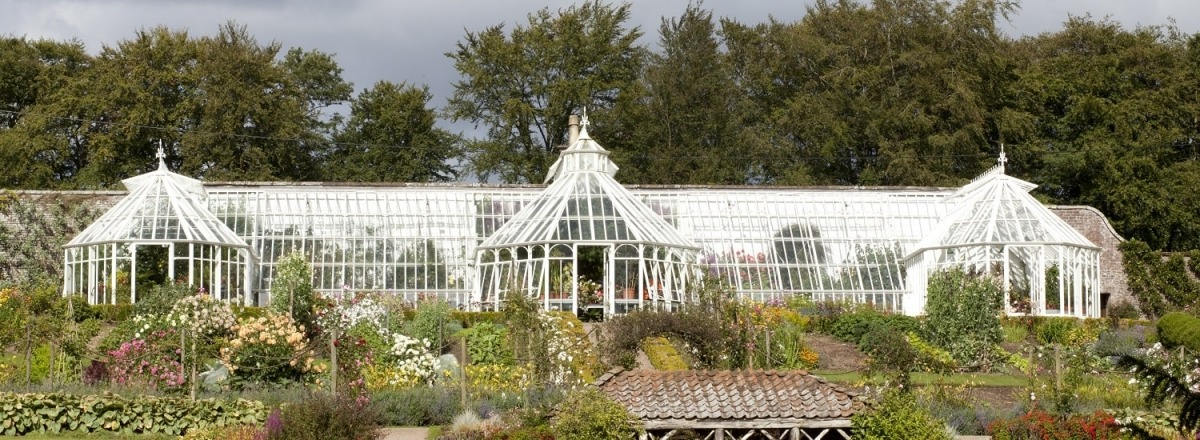 Replacement large lean-to greenhouse at Glenbervie Estate