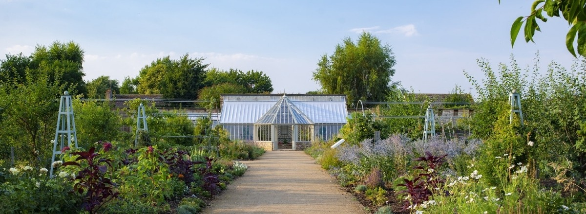 Ramsey Walled Garden's Greenhouse 2 years on
