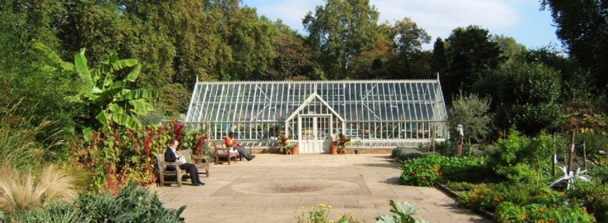 Freestanding Greenhouse for Thrive Charity