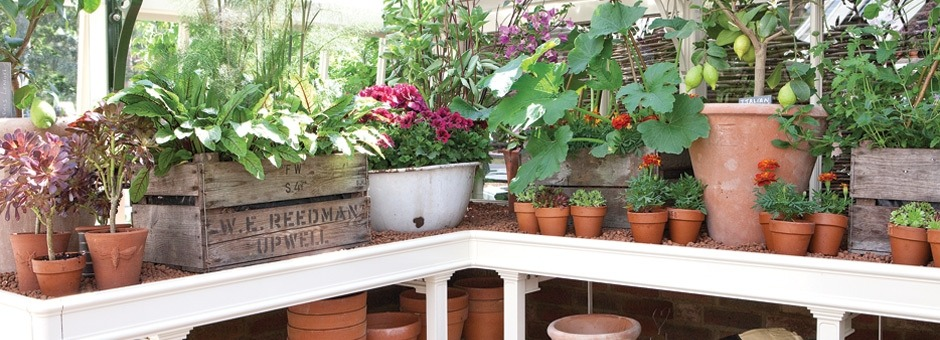 Greenhouse growing accessories