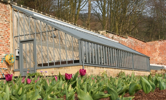30 degree mono-pitch greenhouse in admiralty grey in an old walled garden