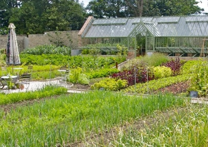The kitchen garden at the award winning Pig on the Beach