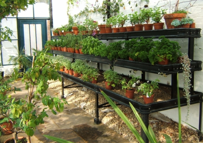 Alitex tiered benching for glasshouse