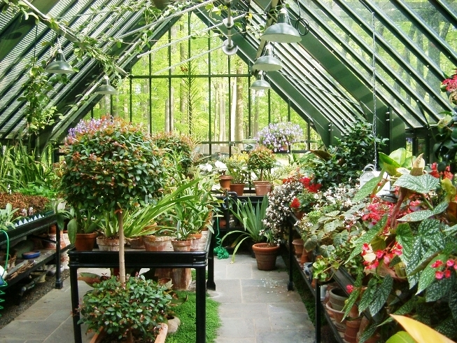 Green greenhouse internal