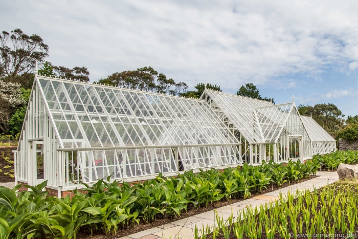 Logan Botanic Greenhouse - Scotland