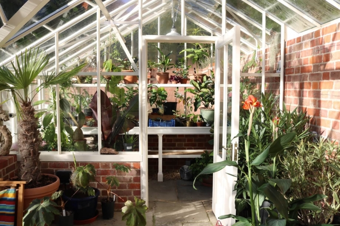 New Possibilities with Your Alitex Greenhouse