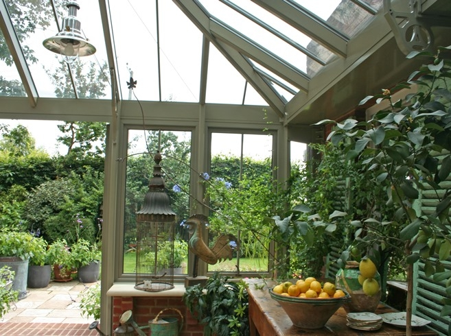 Lemon trees in a conservatory