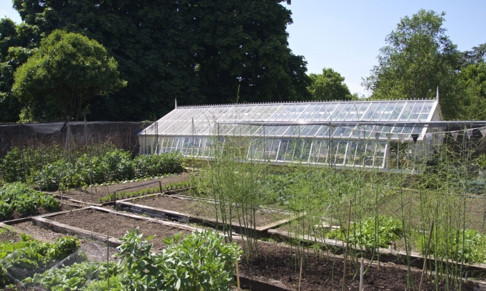Director of Kew's walled garden with bespoke, 3/4 span, lean-to greenhouse