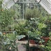 Alitex Free Standing Glasshouse at Lime Wood Hotel & Spa