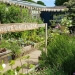 Alitex allotment