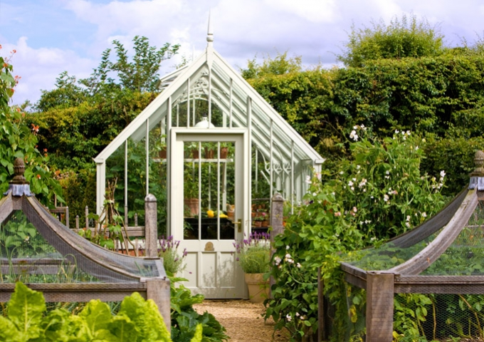 National Trust Hidcote freestanding greenhouse in Wood Sage in pretty kitchen garden with fruit cages