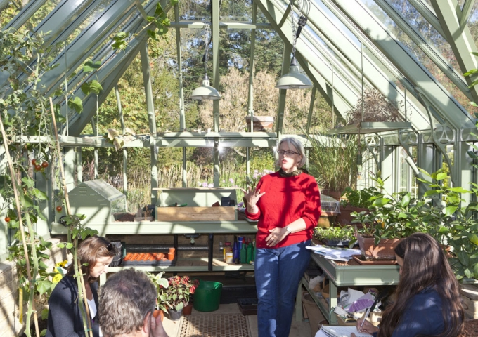 Sowing and Growing Under Glass with Sarah Wain