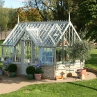 Tasks and Tips for your greenhouse in November