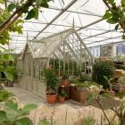 Alitex panel based traditional greenhouse